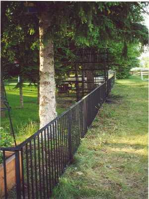 Image showing a classic iron fence.